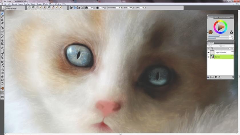 Kitten WIP