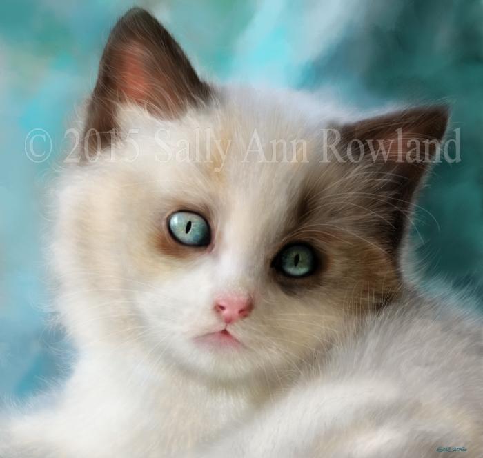 Digital Kitten Portrait - ref pic courtesy of June Artz
